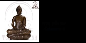 Phật Bổn Sư Sakyamuni